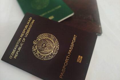 В РУЗ планируется ввести ответственность за сокрытие второго гражданства