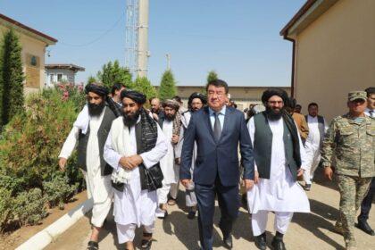 Сурхандарья: как прошла встреча с представителями правительства Афганистана