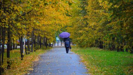 Погода в Узбекистане: прогноз на 3 октября