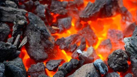 Министр энергетики: зимой жителям удаленных сел Каракалпакстана будут доставлять уголь